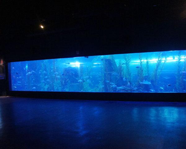 北京花园别墅亚克力鱼缸完成