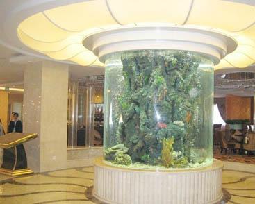 酒店鱼缸建设