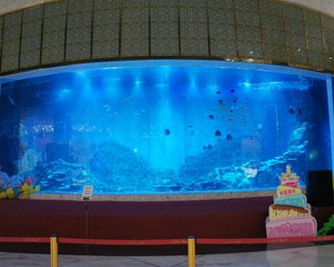 沈阳盾安新一城巨型鱼缸