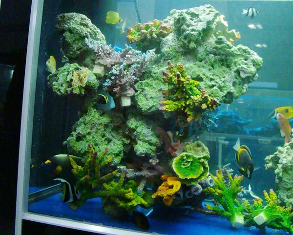 仿真珊瑚石