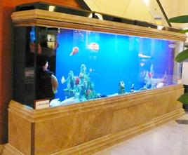 诚信鱼悦生态鱼缸
