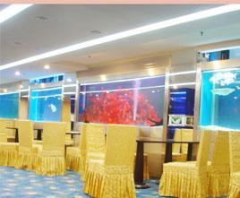 北京全鱼馆鱼缸