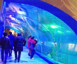 内门呼和浩特酒店亚克力隧道
