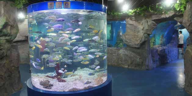 北京自然博物馆亚克力鱼池